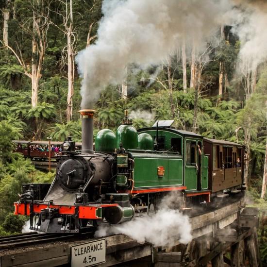 Puffing Billy Steam Train Ride & Half-Day Tour